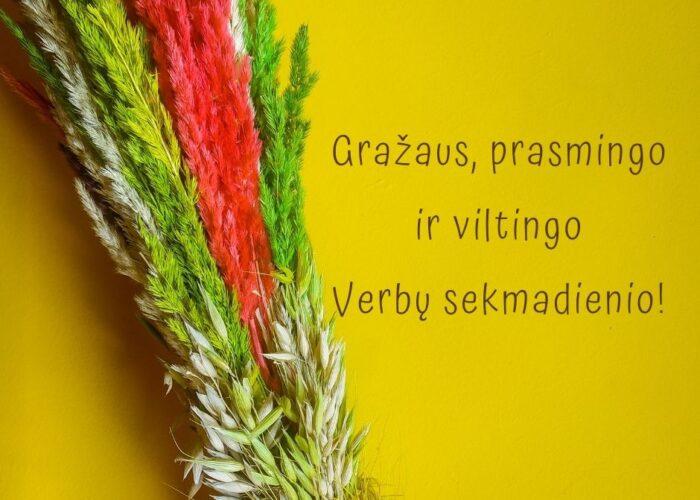 Gražaus, prasmingo ir viltingo Verbų sekmadienio!
